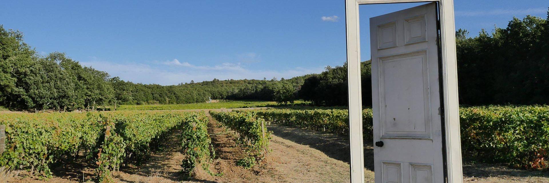 Domaine viticole à Flassans-sur-Issole