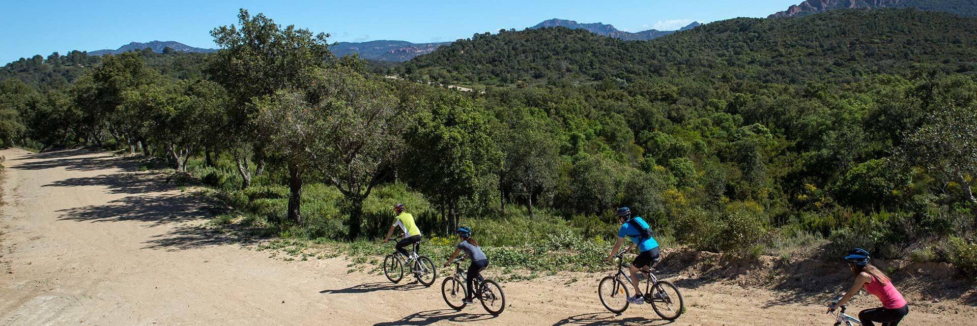 Mountain biking in the Estérel