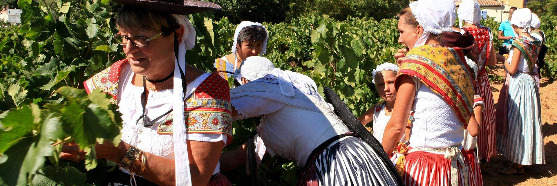 Grape harvest festival in Montfort sur Argens