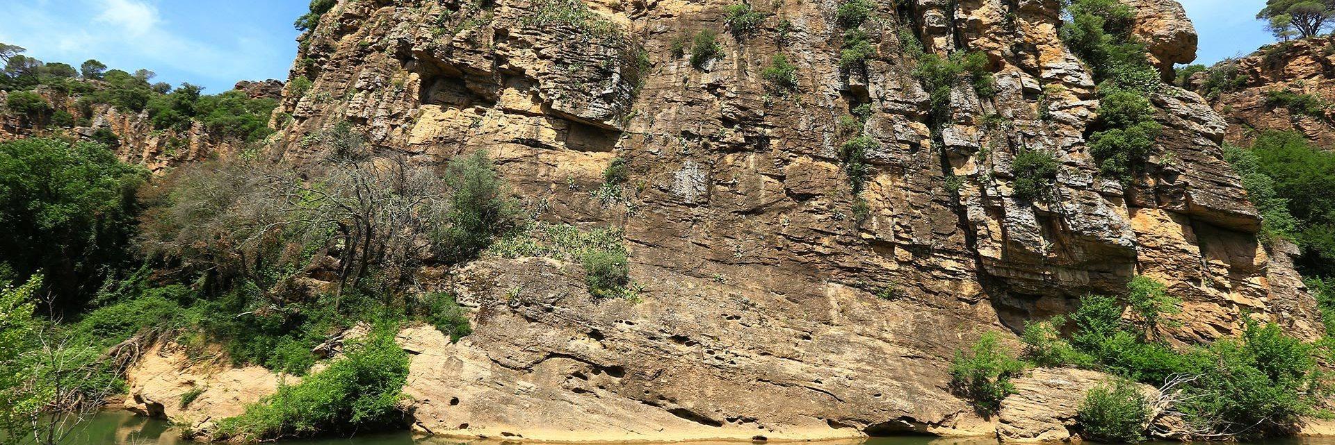 Canoë sur l'Argens en Dracénie