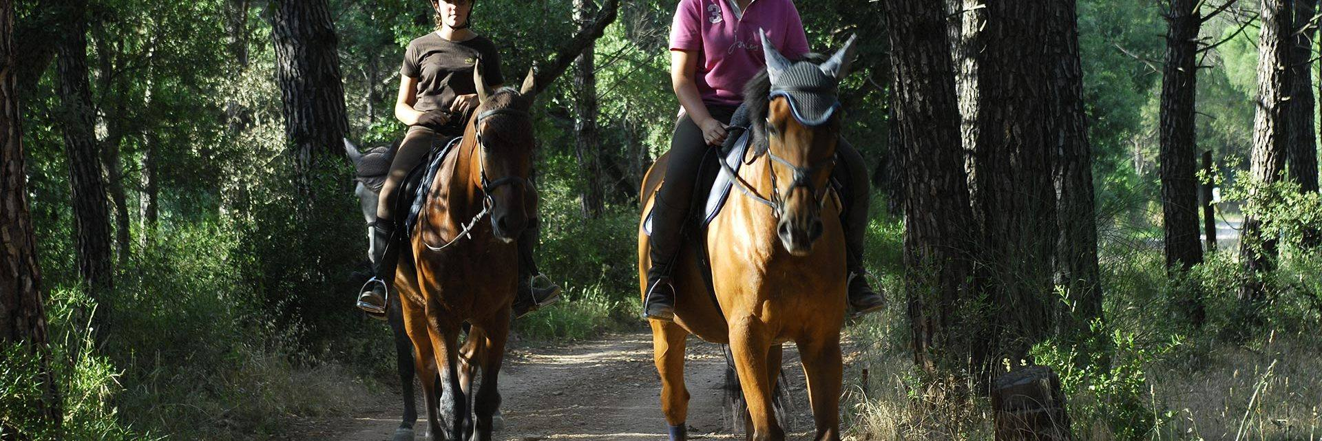 Horse-riding in the Maures Massif