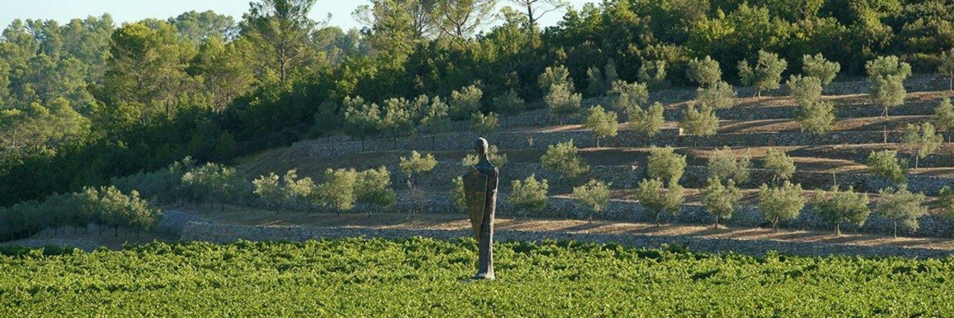 Commanderie de Peyrassol - Sculpture géante d'un chevalier templier au coeur des vignes