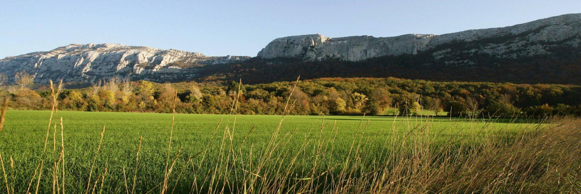 Randonnée massif de la Sainte Baume